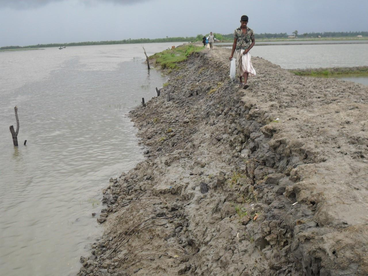 The choppy remains of an eroded embankment wall along a river in Bangladesh.