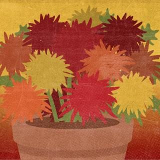 Stylized illustration of winter mums growing in a pot. © The Ohio State University.