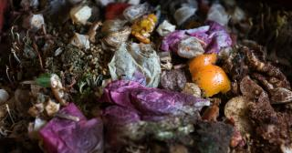 Composting is life, compost picture, The Ohio State University