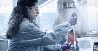 Image of woman processing a coronavirus test